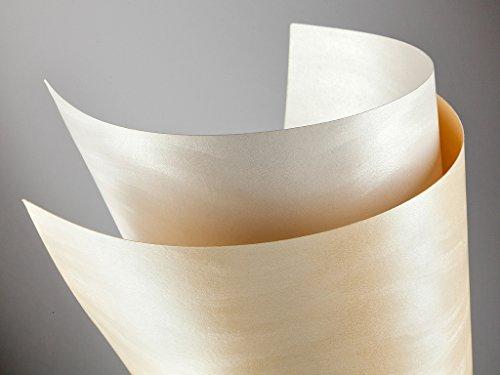 20 FALAMBI Premiumkarton Dune perlweiß, Papier 220 g/m², bedruckbar, metallic Karton, durchgefärbt