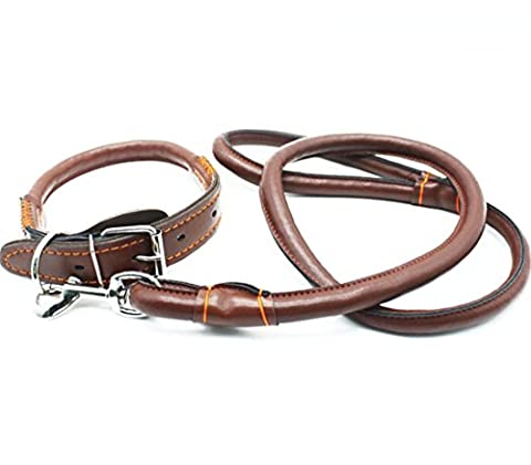 Medium Large Dog Collar Chain Traction Rope With Leather Handle, For Labrador Golden Retriever German Shepherd Husky Outdoor Walking Training Playing