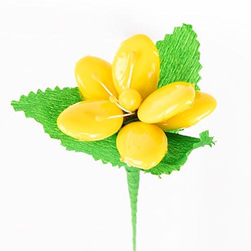 Magnolia gialla con pistilli - fiore di confetto - confetti pelino di sulmona