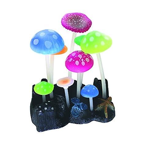 WAVE Fluo Reef Champignon Plante d'Ornement pour Aquariophilie 9,8 x 7,5 x 11 cm