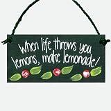 When life Wirft Sie Zitronen Holz handbemalt Wandschild zum Aufhängen