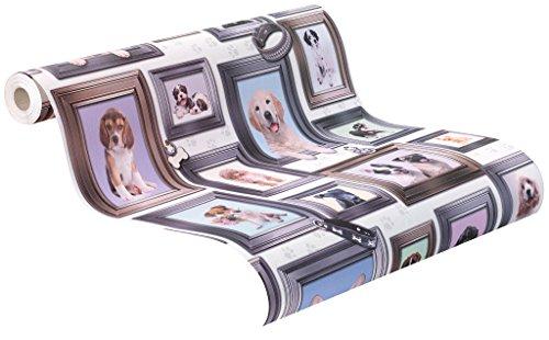 rasch Papier-Tapete, Hunde, Collage, weißer Grund, 272703, Pink, Blau, Gelb