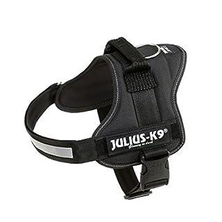 Julius-K9, 162P0, K9-Powergeschirr, Größe: 0, schwarz