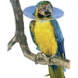 TODOPETS Collar Aves loros 200MM Buster 4 CM Interior