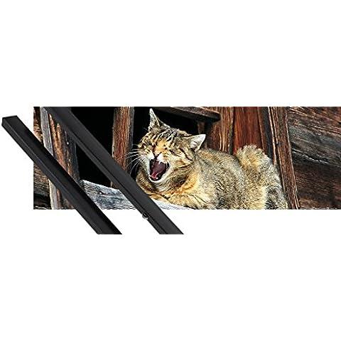 Poster + Sospensione : Gatti Poster Stampa (91x30 cm) Siesta Del Gatto, Non Disturbare E Coppia Di Barre Porta Poster Nere 1art1® - Non Disturbare Cat