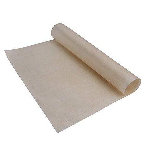 valink 60x 40cm Fiberglas Tuch, Antihaft-Backmatte, Küche Hitze Widerstand Mikrowelle Ofen Backblech rutschsicher Pad, multifunktional BBQ Matte Backgeschirr
