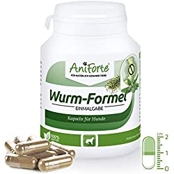 AniForte Wurm-Formel 100 Kapseln für Hunde, praktische und 100 Prozent natürliche Einmalgabe Bei und Nach Wurmbefall
