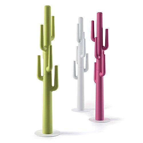 Cactus Appendiabiti.Appendiabiti Cactus Rosso Fuxia
