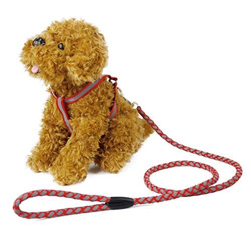 LQ-petsheng Hund Reflektierende Führleine Lange Polyester Training Hundeleine Für Haustier Tracking Ausbildung Brustgurt Hundeleine Blei (Size : S)