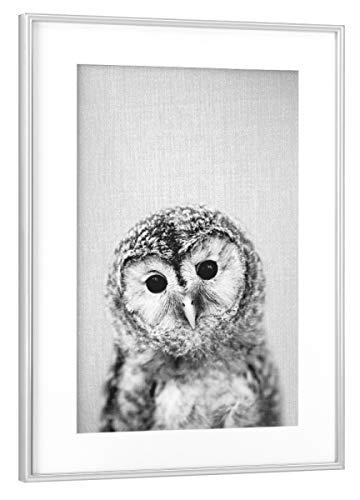 Rahmen Silber 45x30 cm Baby Owl - Black & White von Gal Design - gerahmtes Poster ()