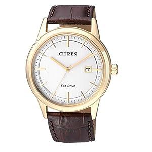 Citizen Hombre Reloj de Pulsera analógico Cuarzo Piel aw1233–01A