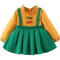 ZHMEI Vestidos niña | Niño Bebé Bebé Niña Peter Pan Collar Volantes Piña Princesa Vestido Ropa 6 Meses - 3 años
