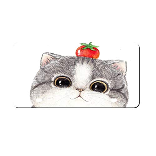 DKISEE Hand Drawn Cat Metal Front License Plate Tag Auto Car Tag Vehicle Tag 4 12x6 inches