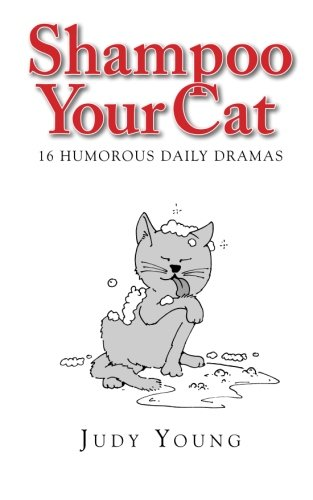 Shampoo Your Cat: 16 Humorous Daily Dramas