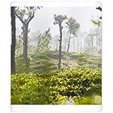Photo Mug of Sunrise at tea plantations, Haputale, Sri Lanka Hill Country, Nuwara Eliya