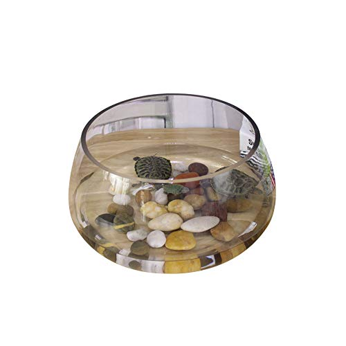 Kreative Aquarium Ökologische Runde Glas Goldfisch-Behälter Große Schildkröte-Behälter-Mini Kleine Landschaftswasserkultur Vase-20cm-A -