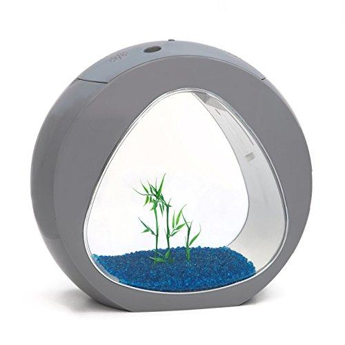 allpondsolutions kleines, rundes Nano-Aquarium, tropisches süßwasserbecker, LED-Beleuchtung, 13,5 l, grau.