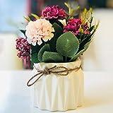 AAPP SHOP Gartenblumen frische kreative keramische Töpfe Simulation grüne Pflanze Bonsai Restaurant Desktop-Dekoration Ornamente Pflanze Topfroserote Stickerei Ball