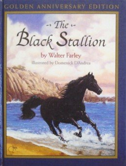 Book cover for The Black Stallion