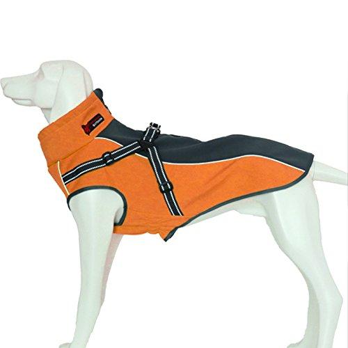 Alfie Pet by Petoga Couture Fellpflege-Brady Wasserdichter Hundemantel mit Integriertem Geschirr, XS, Orange