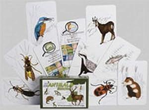 Adlung Spiele 46132 Manimals Europa 1 - Juego de Cartas sobre Animales (Contenido en alemán)