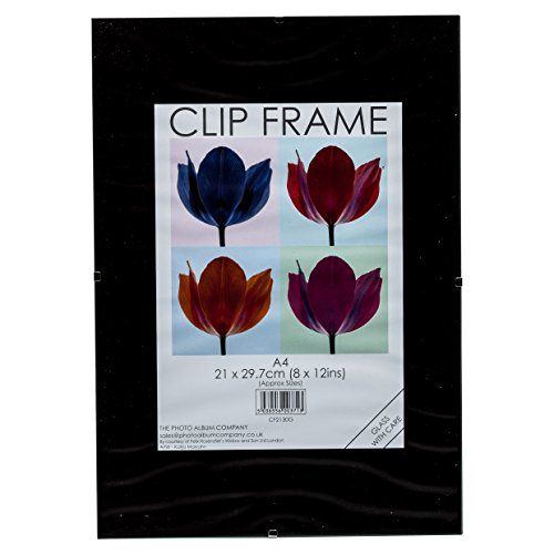 Photo Album Company cf2130g-3pk Clip Frame - Juego