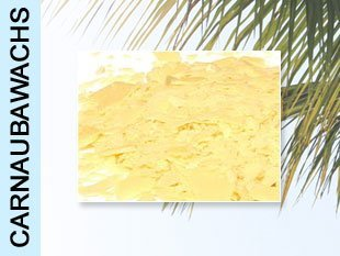 3980eur-kg-carnaubawachs-palmwachs-500g-typ-coatings24-politur-wax-karnuba-kanuba-canuba-wachs-carnu