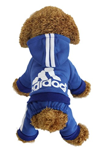 LifeWheel Hundemantel Warm Wintermantel Haustier Mantel Hund Kleider, Blau S