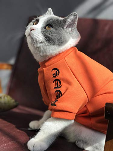 Kostüm Nylon Velvet - L Pet supplies Hund Eltern-Kind tragen Haustier Katze Kostüm Welpen Teddy Baumwolle atmungsaktiv neuen Frühling und Sommer dünn @ Orange Plus Velvet_XS