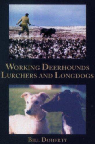 Working Deerhounds Lurchers and Longdogs