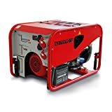 Endress ESE 1506 DSG-GT ES Stromerzeuger