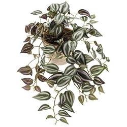 artplants Set 2 x künstliche Tradescantia PACO im Terracotta Topf, grün-weiß-violett, 50 cm - Kunst Dreimasterblume/Deko Zebrakraut