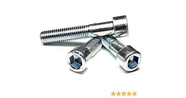 50 St/ück DIN 912 // ISO 4762 PROFI Zylinder Innensechskant Schraube Teilgewinde G/üte 8.8 verzinkt Stahl geh/ärtet M5 x 55 DIN912 PROFI ZYL INB6kt TGW G8.8 VZ SGH