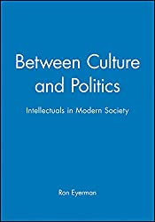 Between Culture and Politics: Intellectuals in Modern Society