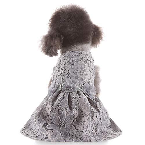 YWLINK Prinzessin Elegant Party Spitze Kleid Haustier FrüHling Sommer Dress Dog KostüMe Haustier Hundekleidung(Grau,XS)