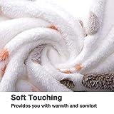 Allisandro warme und weiche Decke für Haustier wie z. B. Hunde oder Katzen, aus Korallen-Vlies, Beige, L - 3