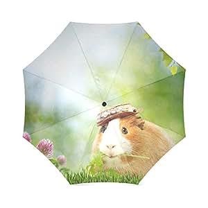 new arrival guinea pigs design fashion portable foldable