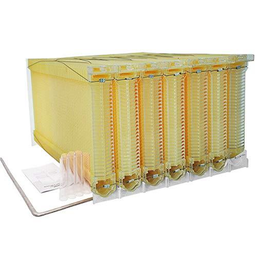 7Pcs Auto Flow Honey Beehive Frames Beekeeping Kit Bee Hive Auto Harvest Honey