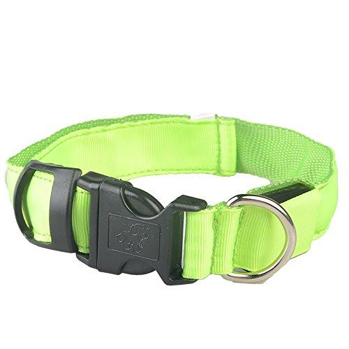 Balock Schuhe LED-Normallack-Glühen-Hundehalsband, Sicherheits-Haustier-Kragen für Beleuchtete Nylon-Halskette,Haustier Hund Katze Zubehör,Für Kleine HundeKatze (Grün, S) (Glühen Halsketten Grün,)