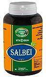 Salbei Kapsel 180 Kapseln je 350mg rein natürliches Pulver, ohne Zusatzstoffe von VitaIdeal