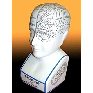 12 Ceramic Phrenology Head by AcaciaHome