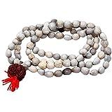 Vibgyor Vibes™ Original Natural Vaijaynti Mala - 108+1 Beads With 5 Mukhi Rudraksha (Jap Mala). Bead Size 07 MM. Can Be Worn And Used For Jaap As Well.