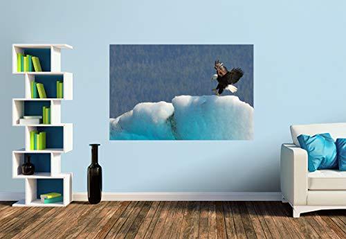 Premium Foto-Tapete Weißkopfseeadler, Golf von Alaska (versch. Größen) (Size S | 186 x 124 cm) Design-Tapete, Wand-Tapete, Wand-Dekoration, Photo-Tapete, Markenqualität von ERFURT -