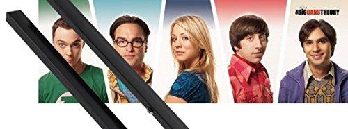 1art1® Poster + Suspension : The Big Bang Theory Midi Poster (91x30 cm) Sheldon, Leonard, Penny, Raj, Howard Et Kit De Fixation Noir