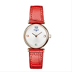 Ladies leather strap watch/ fashion diamond Women Watch/Waterproof quartz watches-D
