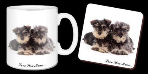 Miniatur-Schnauzer Hunde