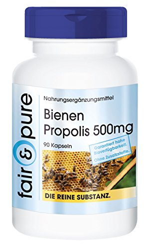bee-propolis-500mg-rich-in-flavonoids-procyanidins-in-pure-form-no-additives-or-excipients-90-vegeta