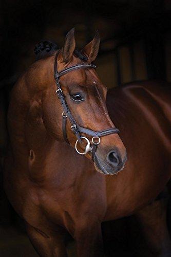 Horseware Rambo Micklem Deluxe Competition Bridle Trense Farbe und Größe wählbar (braun, Small Horse)