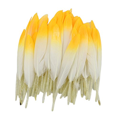 chöne Natürliche Naturfedern Gänsefedern Echte Gänsefedern Bastelfedern Schmuckfedern Zierfedern - Weiß Gelb ()