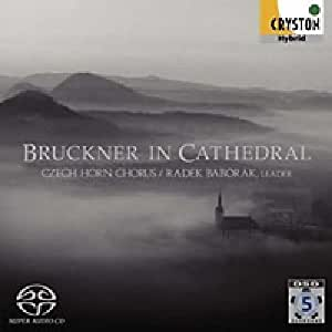 Bruckner in Cathedral by Cryston